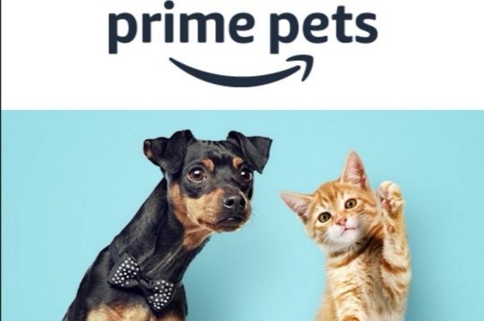 Amazonプライムペット