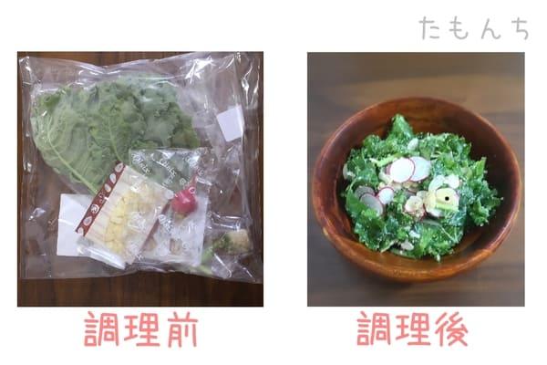 オイシックスサラダミールキットの調理前、調理後写真