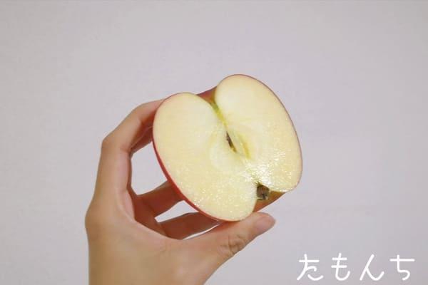 りんごの断面写真