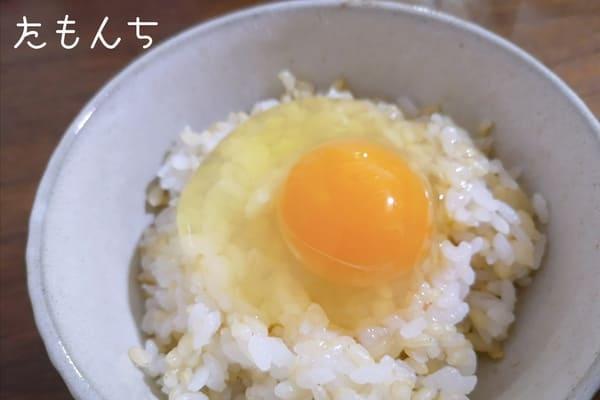 卵かけご飯の写真