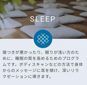 SLEEPの説明