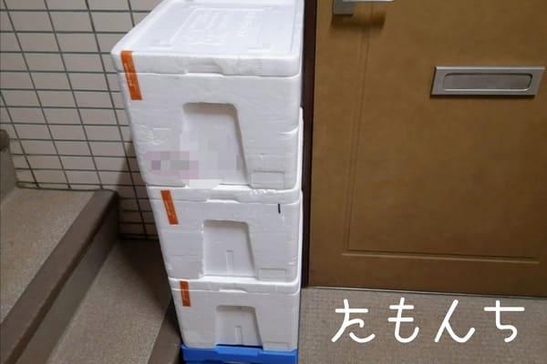 梱包箱の写真
