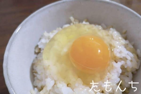 卵がけご飯の写真